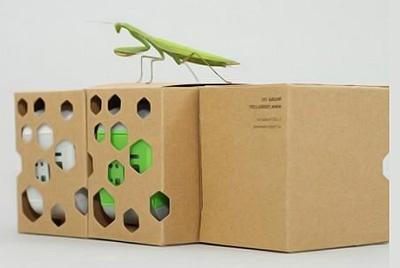 экологически чистая упаковка из картона